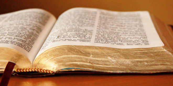 LET THE BIBLE SPEAK (chapter one)