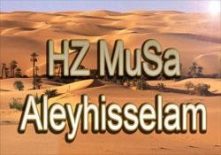 Hz. MUSA a.s.